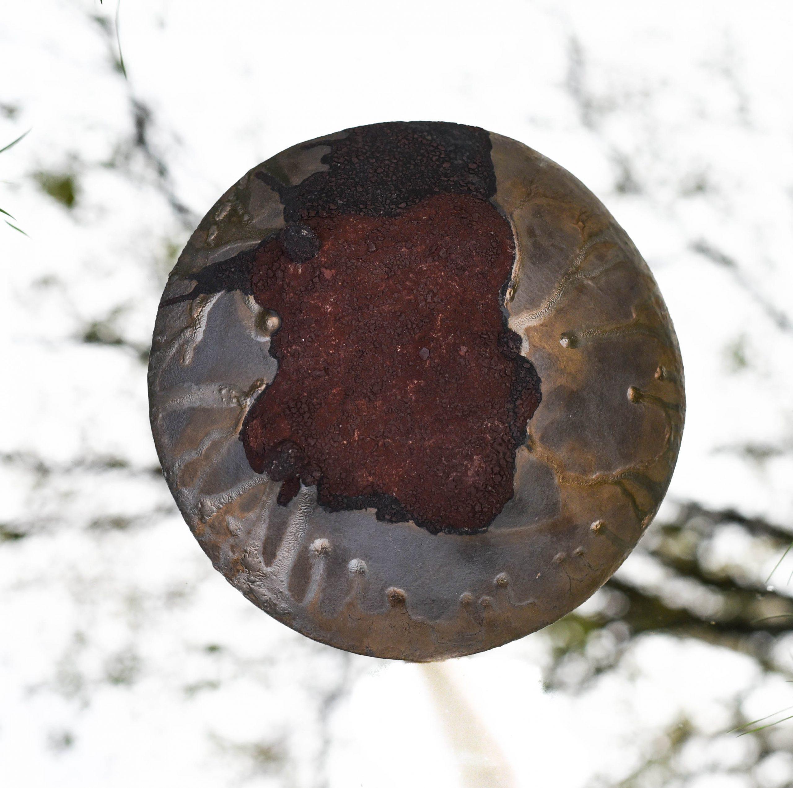 Les ilots sont des sculptures de grès entièrement recouvertes d'émail. Leur forme est celle d'une grosse lentille de 30 cm de diamètre. Les 2 cotés de la pièces sont émaillés. Dans une volonté de sobriété, un seul émail bronze doré est utilisé. Par petites touches, un second émail marron évoque les lichens. Cette sculpture évoque à la fois une cellule vue en microscopique électronique (les ilots de Langerhans sont les amas de cellules qui fabriquent notamment l'insuline) ou un vaste paysage vallonné dans lequel on peut rêver, Autres mots clés : céramique - art cuisson - haute température – sciences