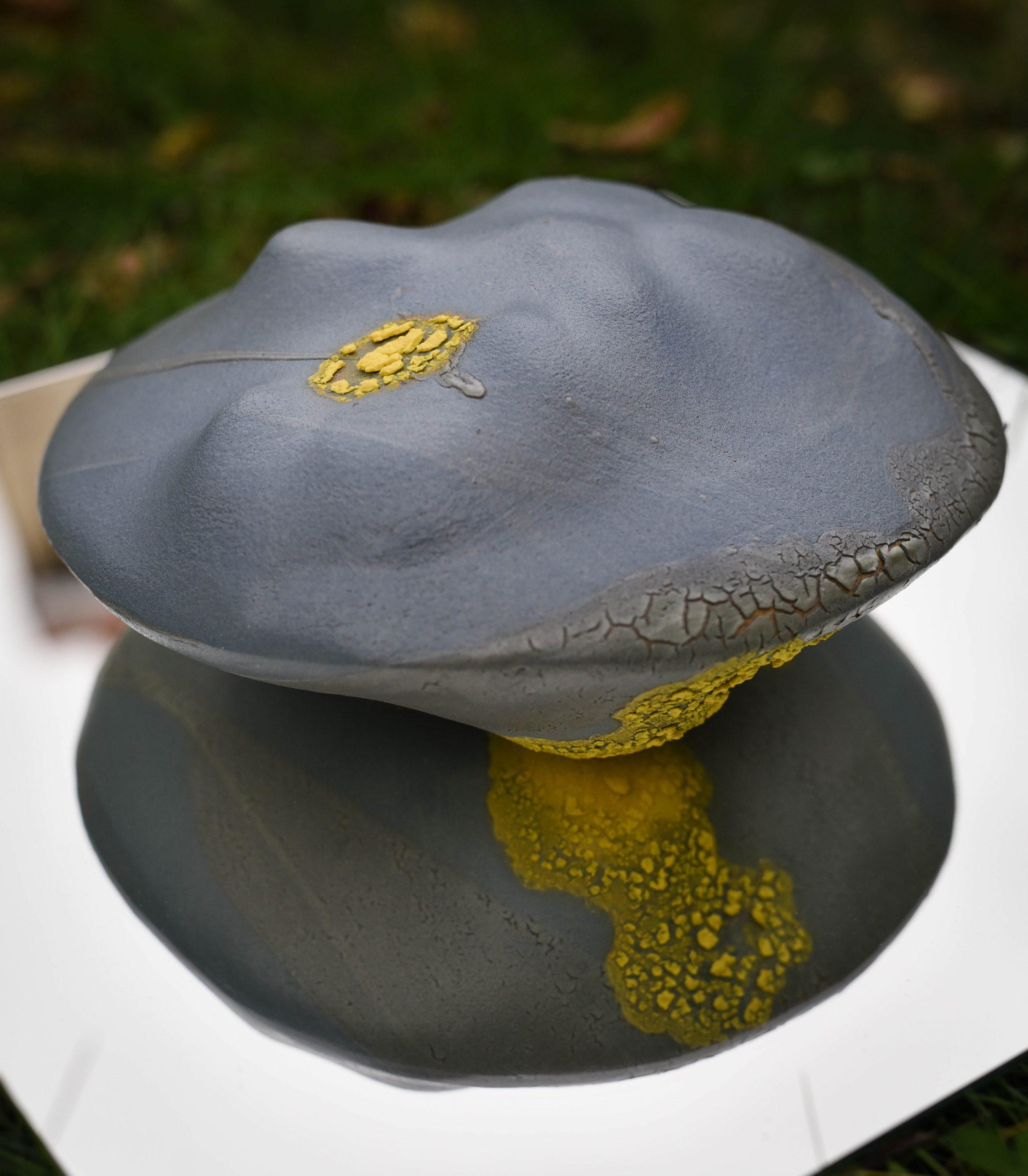 Les ilots sont des sculptures de grès entièrement recouvertes d'émail. Leur forme est celle d'une grosse lentille de 30 cm de diamètre. Les 2 cotés de la pièces sont émaillés. Dans une volonté de sobriété, un seul émail bleu mat est utilisé. Par petites touches, un second émail jaune évoque les lichens. Cette sculpture évoque à la fois une cellule vue en microscopique électronique (les ilots de Langerhans sont les amas de cellules qui fabriquent notamment l'insuline) ou un vaste paysage vallonné dans lequel on peut rêver, Autres mots clés : céramique - art cuisson - haute température – sciences